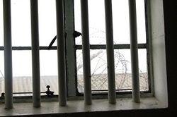 лишение свободы