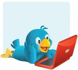 Почему программисты Твиттера злы на главу сервиса микроблогов