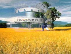 Учрежденный в Украине земельный банк получит землю на продажу