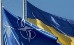 Экс-министр верит, что Украина скоро станет членом НАТО