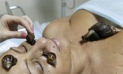 Новый тренд косметологии Японии – терапия улитками
