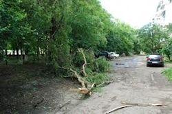 На Западе Украины прошел мощный ураган, - есть жертвы