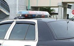 В Фениксе и Чикаго расстреляли людей, погибла 15-летняя девушка