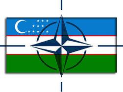 НАТО начинает «тестировать» Узбекистан на предмет вывоза контингента