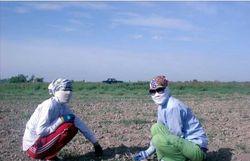 В Узбекистане продолжается практика «привлечения» к сельхозработам