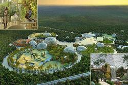 В новом зоопарке Петербурга будет 5 га «зоны контакта»