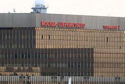 В течение получаса в «Шереметьево» с птицами столкнулись 2 лайнера