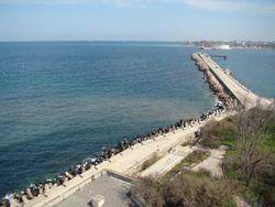 В Севастополе неочищенными стоками загрязняется Мартынова бухта