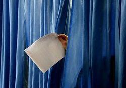 парламентские выборы