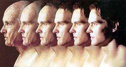 Старение мозга остановлено, - не за горами бессмертие человека