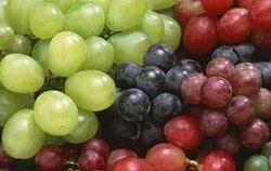 Ученые рассказали о пользе винограда