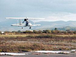 Во время опыления леса разбился самолет в Оренбургской области
