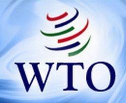 Украина будет пересматривать ставки импортных пошлин ВТО сегментировано