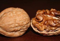 Из-за пошлин на авто Турция ударила по украинским орешкам