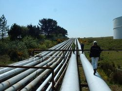 Польша не пустит новый газопровод из России в обход Украины
