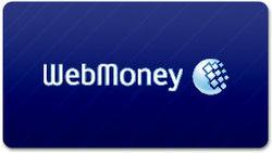 Массовой проверки клиентов WebMoney не будет – Миндоходов