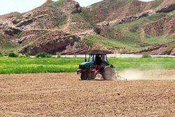 В последующие 50 лет температура в Узбекистане будет расти – Всемирный банк