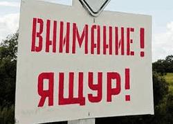 Вспыгка ящура в Амурской области