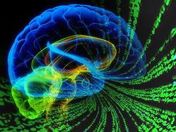 Ученые создали систему навигации по мозгу человека