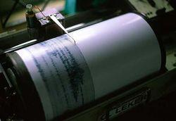 Сочи встряхнуло землетрясение