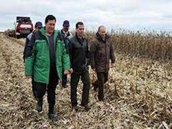 Путин о зерновых интервенциях: главное быстрота и эффективность