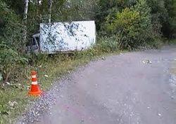 Развлечения пьяных жителей Киева: украсть ЗИЛ и ударить в дерево