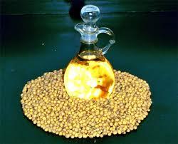 Прогноз IGC: мировое производство сои повышено