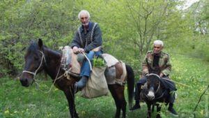 tur-v-nagornii-karabakh-karabakhtsi-600x