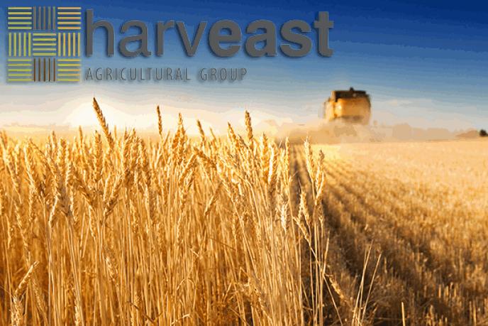 harveastagroholding-60000.png