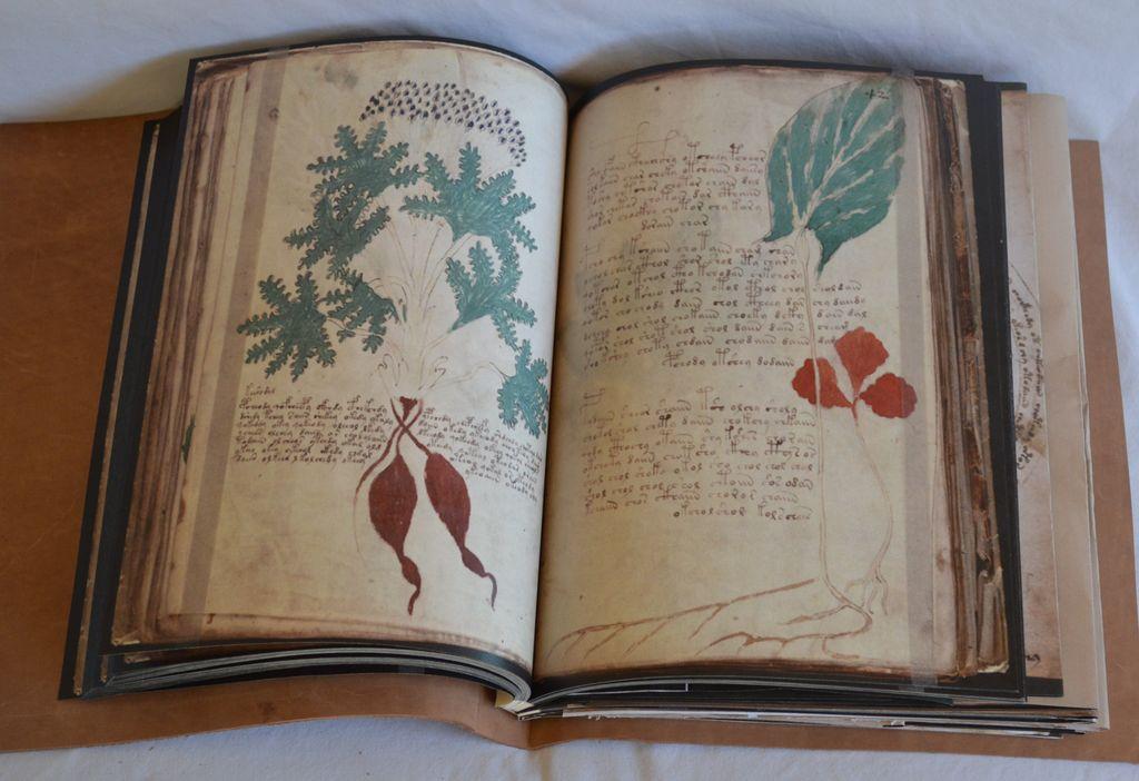 Испанское издательство получило право разместить манускрипт Войнича
