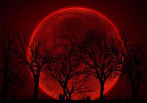 55fc2f22d5708_Moon.jpg