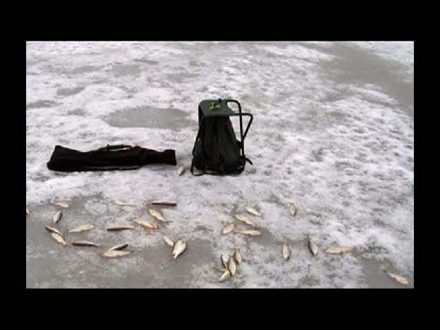 кугони рыбалка